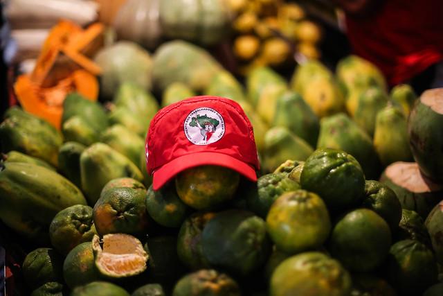 Feira Nacional da Reforma Agrária