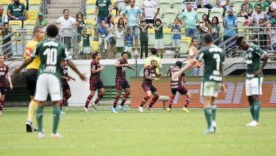 Photo of STJD absolve Flamengo e multa Palmeiras por ocorrências em jogo do Brasileirão 2019; veja