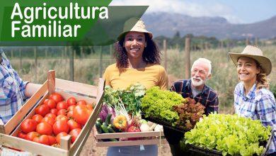 Photo of Bolsonaro veta Projeto de Lei de Amparo a Agricultura familiar